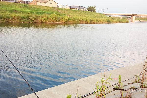 1-三条市-新潟市を中心に身近な河川で五目釣り