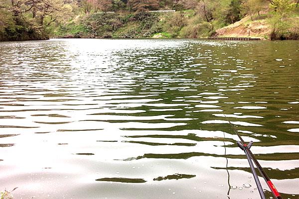 2-新潟県加茂市下条川ダム-初めはちゃんとヘラブナ釣りに興じていたんだけれど