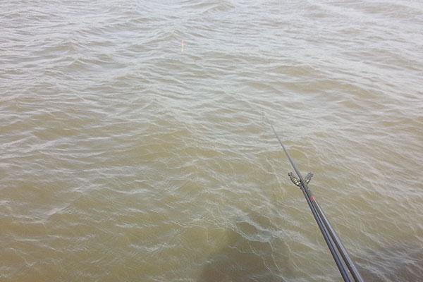 6-六郷の池-風が強くてヘラブナ釣りにならなかった