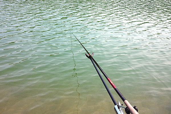 4-新潟県-見附市-大平森林公園-ヘラブナ釣り風の鯉釣り開始-水が澄んでる