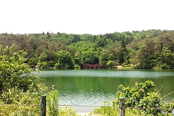 2-新潟県-見附市-大平森林公園-初夏の装い