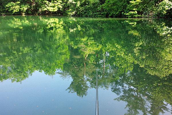 3-プロマリン-PRO-MARINE-PG-清風-240-万能-小継竿-みみずでギルバス釣り-見附市-大平森林公園はすっかり初夏の装い
